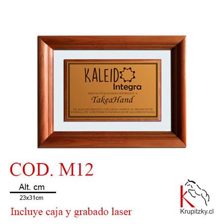 COD. M12.jpg