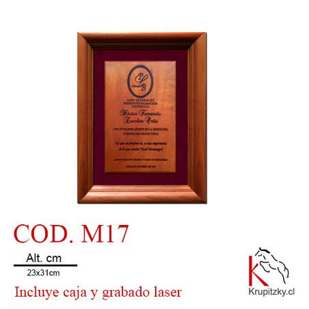 cod. m17.jpg