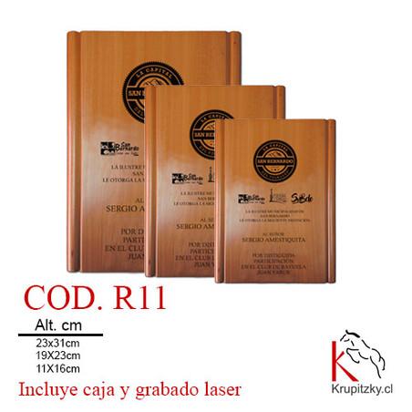 COD. R11.jpg