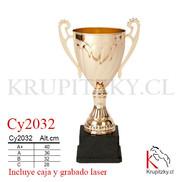 Cy2032.jpg