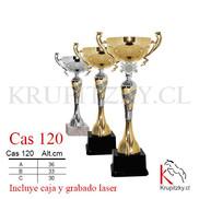 CAS 120.jpg