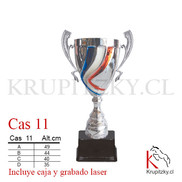 CAS 11.jpg