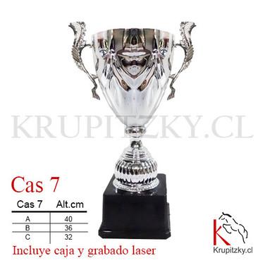 CAS 7.jpg