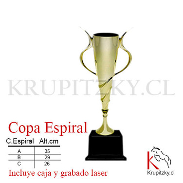 COPA ESPIRAL .jpg