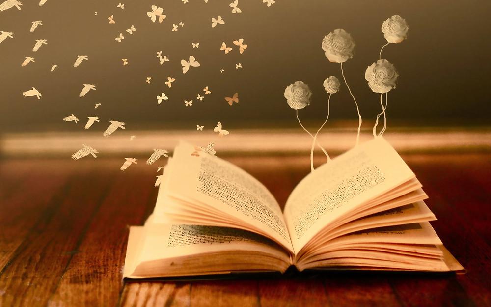 livre ouvert le livre de ma vie écrire un roman sur moi sur ma vie sur mes épreuves évoluer en passer les pages tourner la page d'un livre écrire mon histoire chapitre par chapitre ta vie est ton roman incarner un personnage que je veux