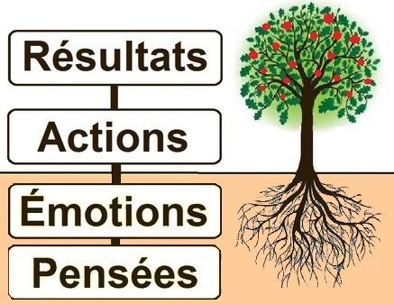 pensées actions actions comportements résultats, interne, introspection, cheminement interne, apprendre, vie, programme bien-être,