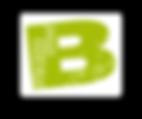 BMS logo small and transparent backgroun