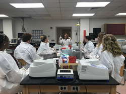 Students in lab lecture