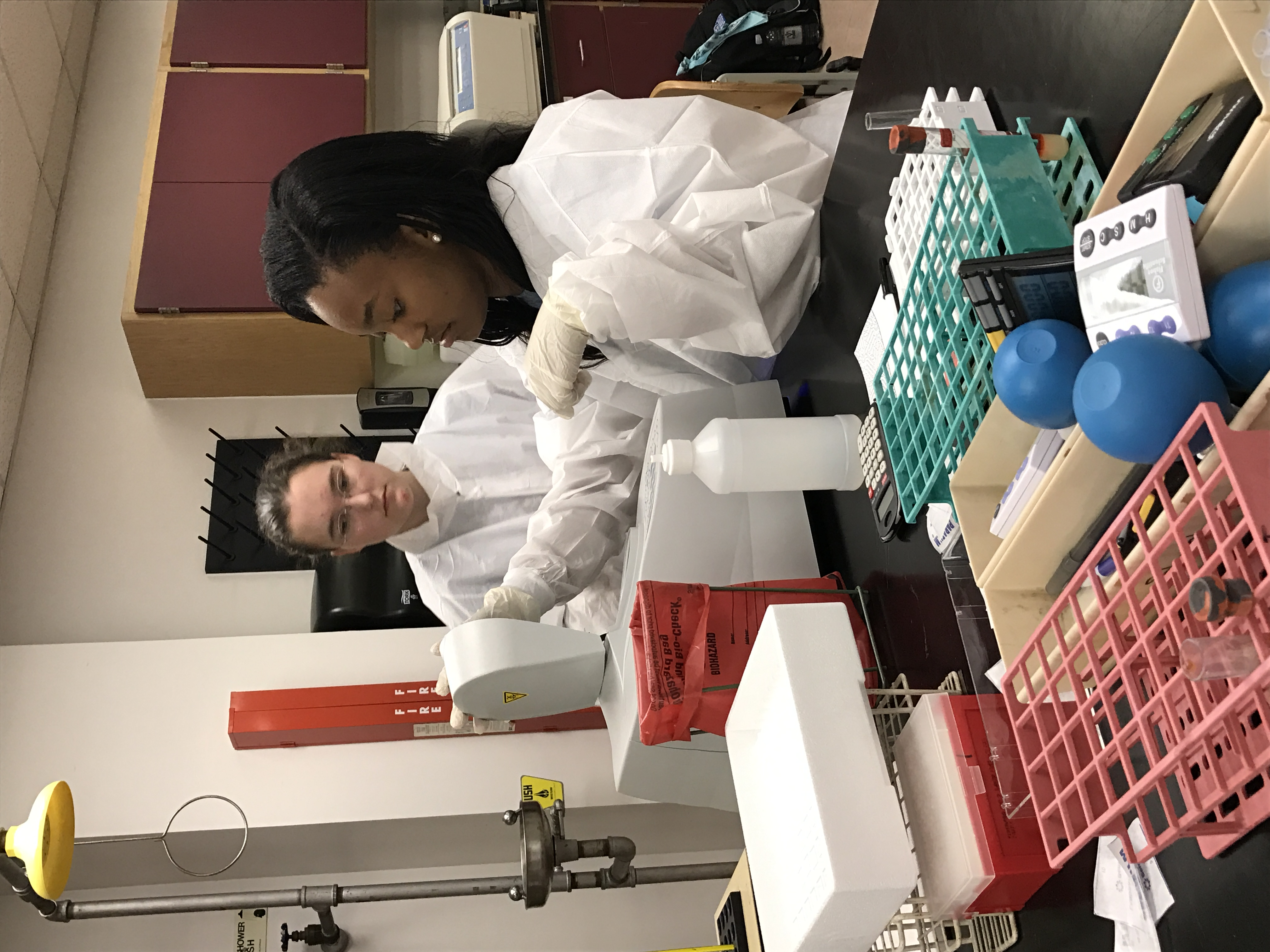 Jelauryn and Elizabeth performing lab activity