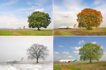 Vier Jahreszeiten - Flughafen Frankfurt