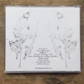 Ali George Album Artwork for the back cover