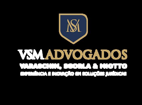 vsm-01.png