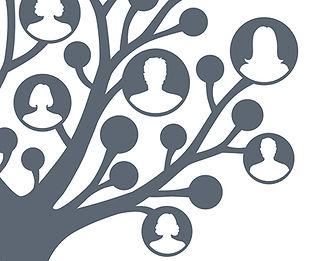 Family-Tree-illustration_crop-website.jpg