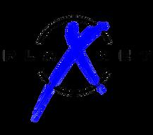 PlanetX_LogoBLK-BL (2).png