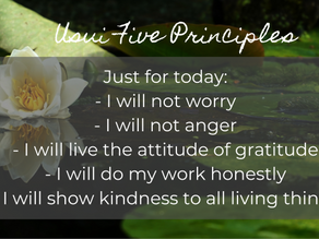 What are the Usui 5 Principles really?