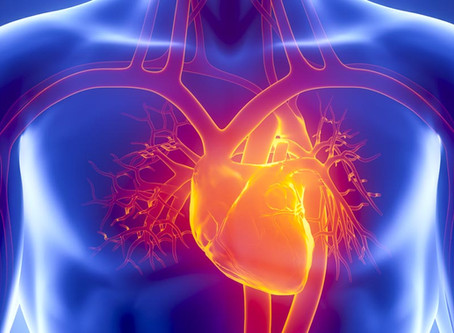 Acupuncture Prevents Heart Damage Confirmed