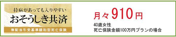 fuji1000b.jpg
