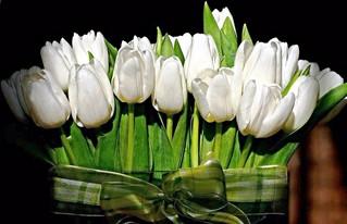 Чудесный весенний праздник и много красивых слов!