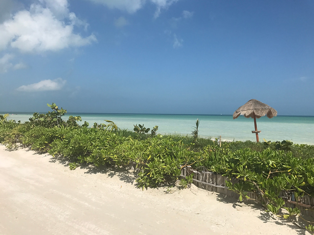 sandy road  beach Isla Holbox