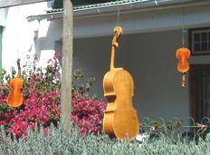 Instruments-in-sun5.jpg