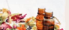 Flacons, fleurs et plantes pour la pharmacie
