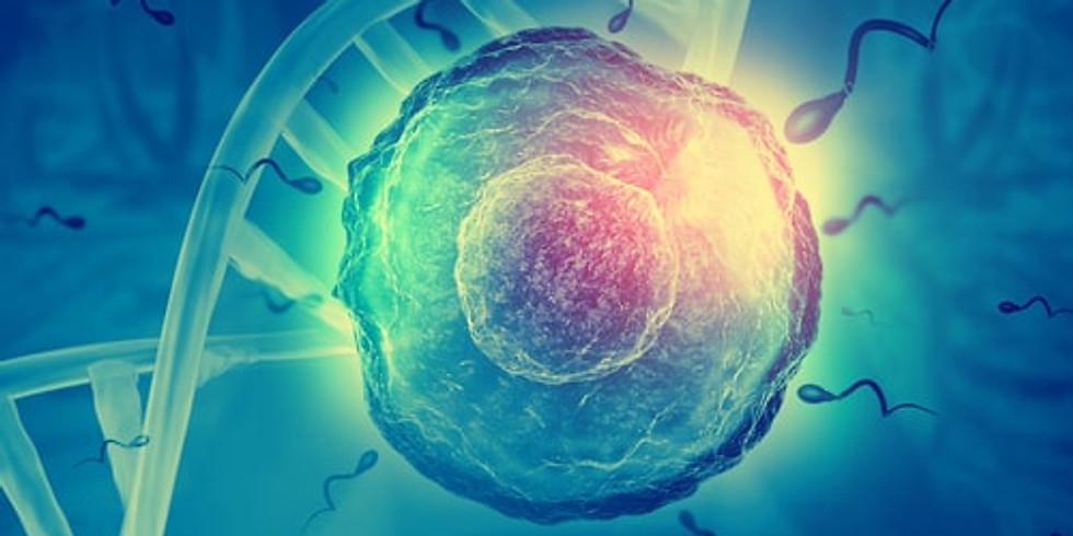 Module 4 : Perturbateurs endocriniens et autres risques chimiques de l'alimentation - 459