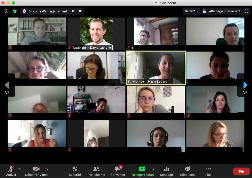 groupe de stagiaires lors d'une formation de nutrition en ligne