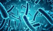 Microbiote-min.jpg