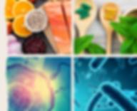 visuel pour nos formations de nutrition, micronutrition, microbiote et santé environnementale