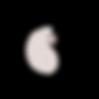 Transparante Logo.png