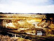 Zustand 1982: Blick nach Osten, rechts Lage Hof Vosselmann