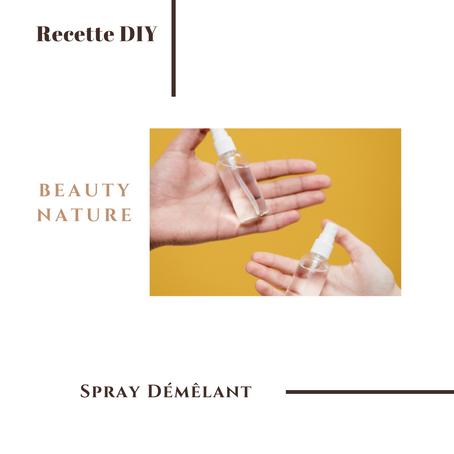 Recette Spray Cheveux