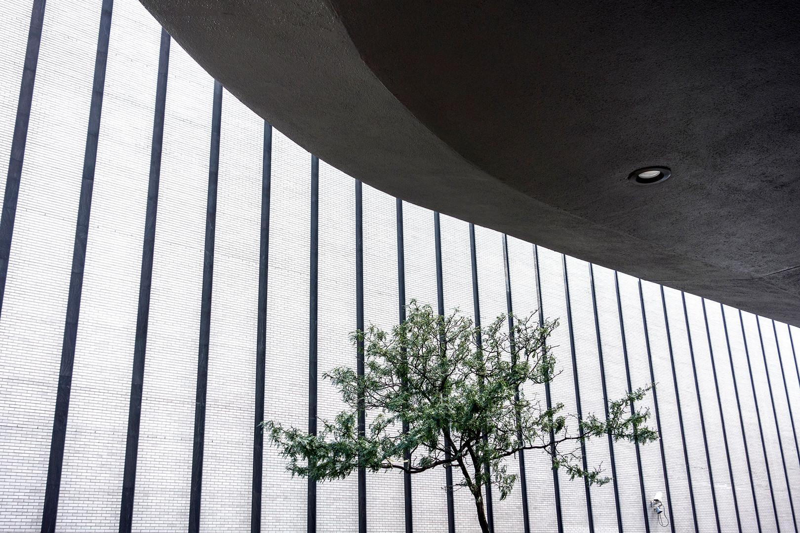 new york_DSC07108.jpg