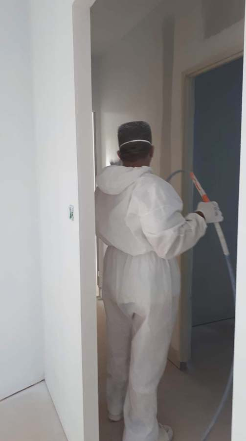 peinture de plafonds et murs
