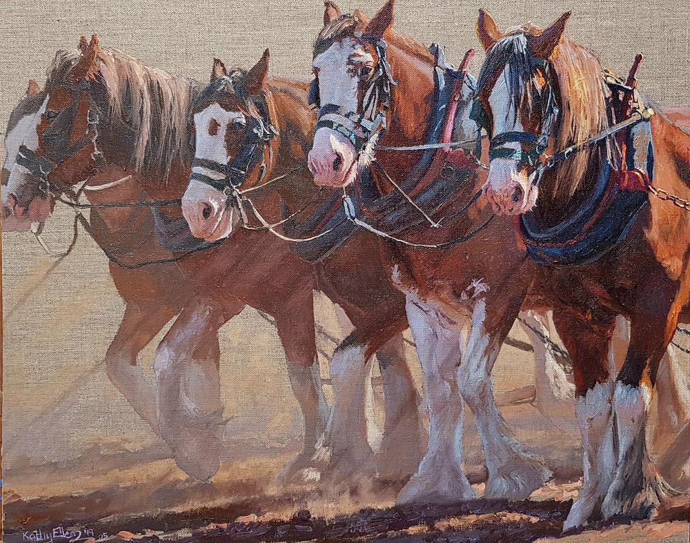 Kathy Ellem draught horses