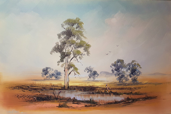 Outback, brake from the dry