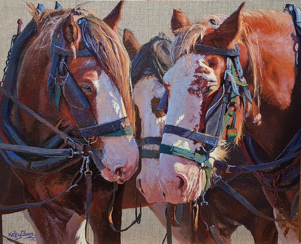 Kathy Ellem draught horse