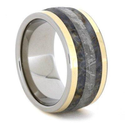 Meteorite Titanium Gold Inlay Dinosaur Bone Ring