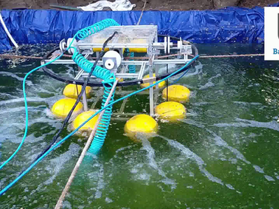 How this aquafarming startup evolved from a stand-alone technology to a market-ready product