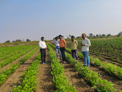 How this startup uses technology to help smallholder farmers increase yield