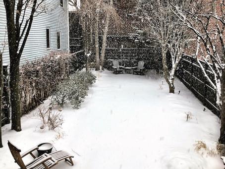 79: March Snow