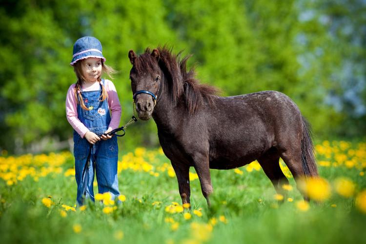 Nateskin gel réparateur cheval enfant