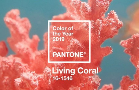 Color of the year 2019 is...