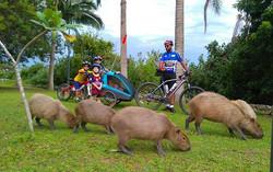 Existem momentos que só quem pedala irá presenciar!! #familiapedal7 #mountainbike #movimentocaloi #c