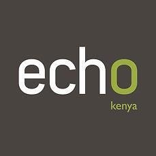 Echo_International_Logo_Grey_Kenya.jpg