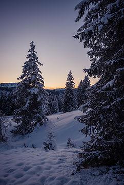 Winter_Tobias_Hertle-8289.jpg