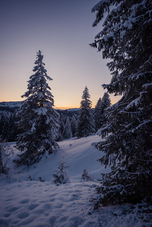 Winter Wonderland im Allgäu