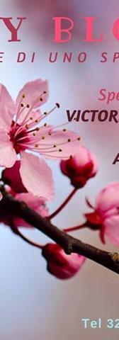 Cherry Blossom pg.jpg