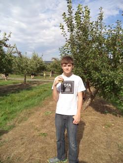 Tomber dans les pommes!