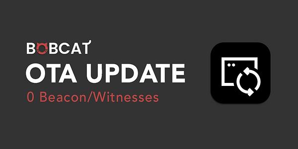 OTA update 2.png